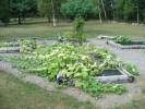 Orgonizirani vrt